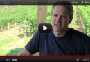 Ross Hackworth of Nichol Vineyard talks Cabernet Franc