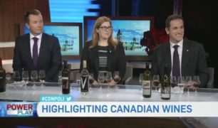 CTV Powerplay wine-panel